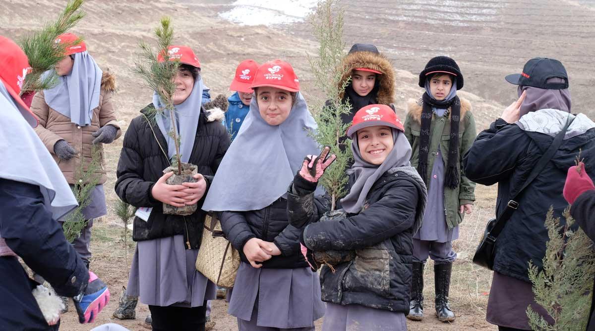 Plantation Arbres Iran